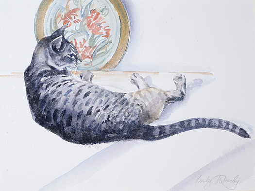 Spotted Cat with a Plate