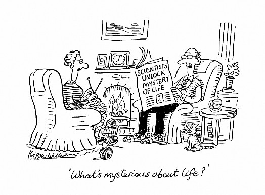 'What's Mysterious About Life?'