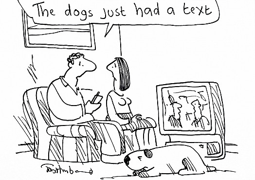 The Dogs just Had a Text