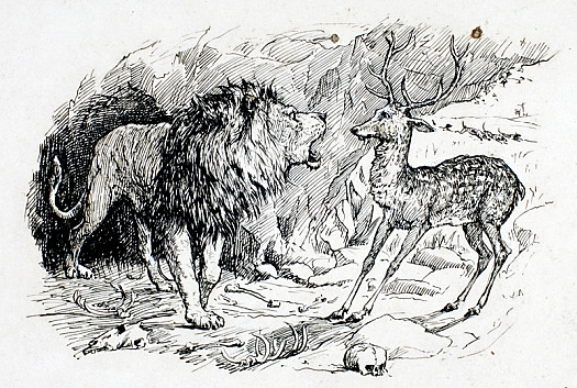 The Deer and the Lion
