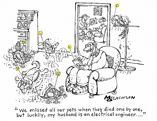 We Missed All Our Pets When They Died One by One, but Luckily, My Husband Is an Electrical Engineer...