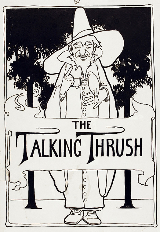 The Talking Thrush