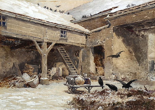 Rooks In a Snowy Courtyard