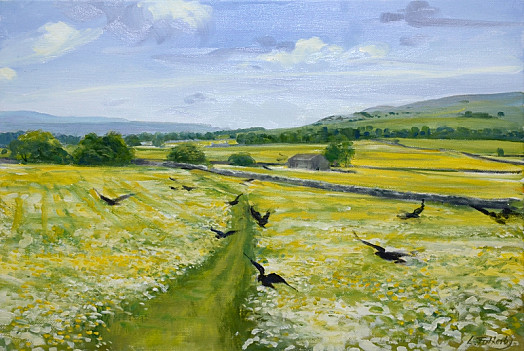 The Path through the Meadow, Arncliffe