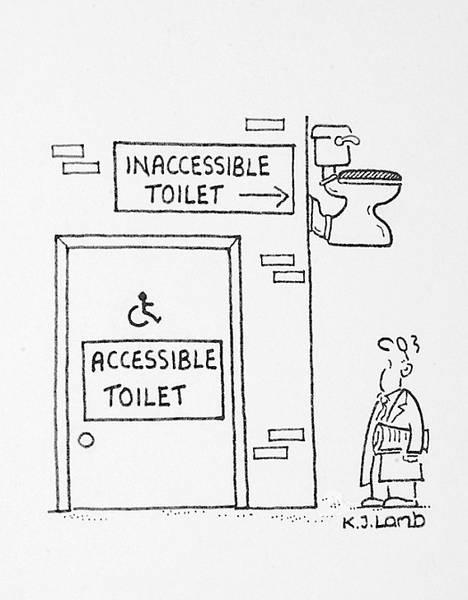 Inaccessible Toilet