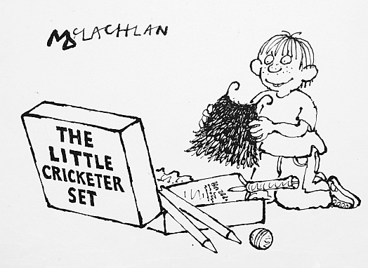 The Little Cricketer Set