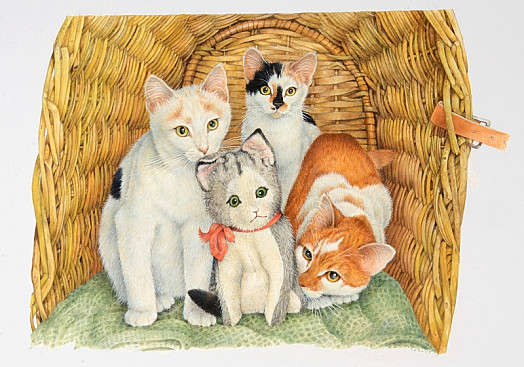 Snowdrop, Daisy and Samphire