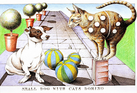 Small Dog with Cats Domino