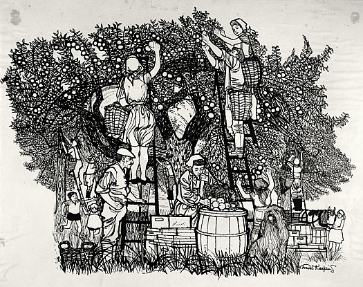 The Apple Pickers