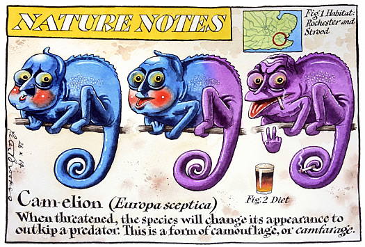 Nature Notes – Cam-Elion