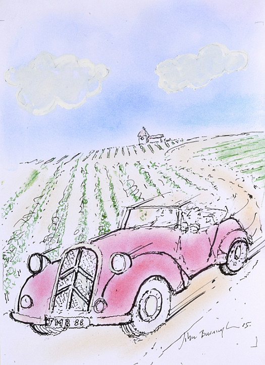 Driving Through the Vineyard I