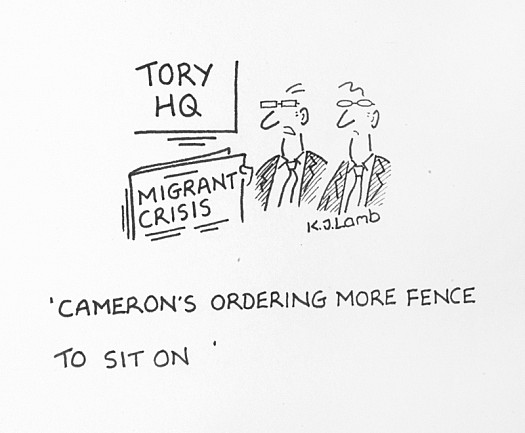 Cameron's Ordering More Fence to Sit On