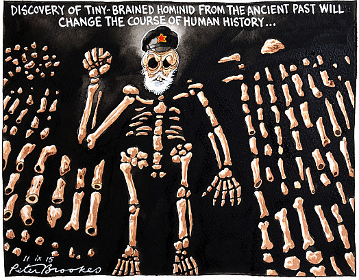 Discovery of Tiny-Brained Hominid from the Ancient Past Will Change the Course of Human History ...
