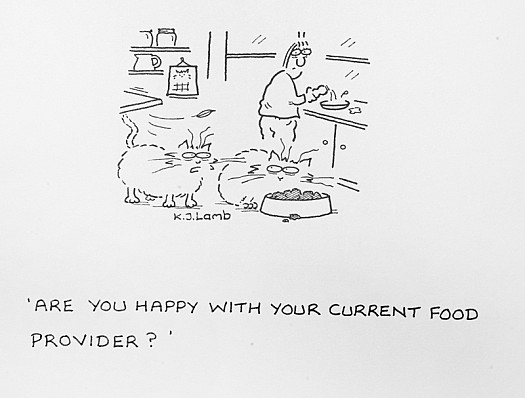 Are You Happy with Your Current Food Provider?