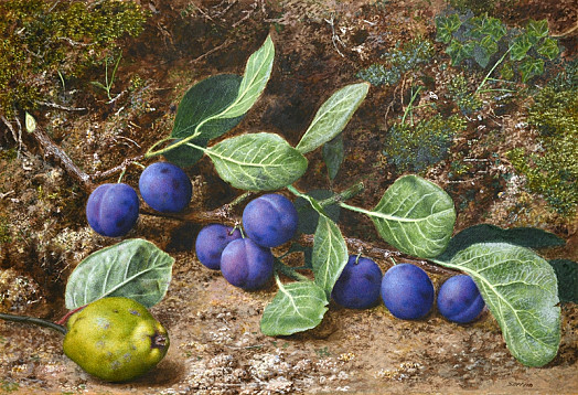 Still Life with Plums and a Quince