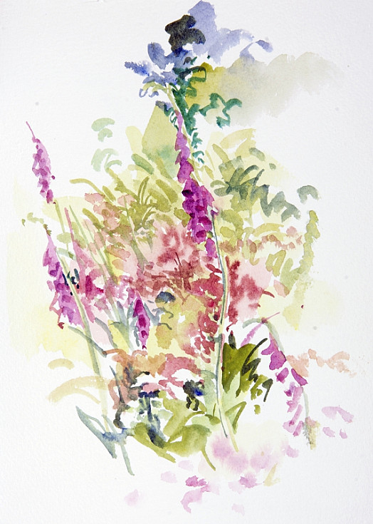 Foxgloves stand out against the green or gold